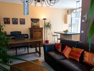 Nice 2 bedrooms Apt  + terrace bbq, Grenoble