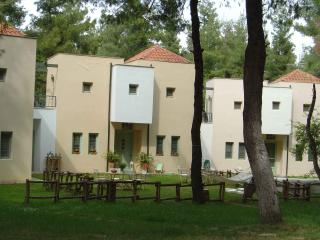 Summer villa in the forest of Sani Chalkidiki