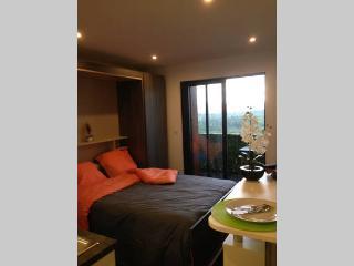 magnifique studio vue sur montagne, Annecy-le-Vieux