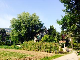 rent holiday Italy, Urbino, Marche, Sassocorvaro