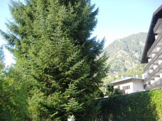 Privat Apartment, Bad Hofgastein