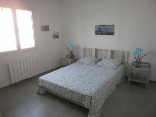 Villa neuve 105 m2 avec piscine 5x2M, Pomerols