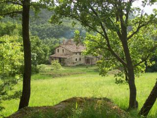 The house in the woods, Castiglione D'Orcia