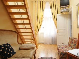 Apartment Siroka Prag 1 - Old Town