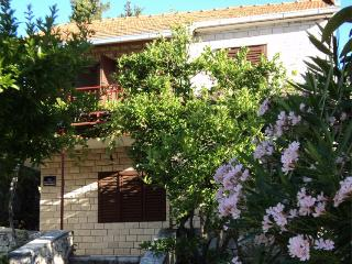 Holiday house - 50 m from beach
