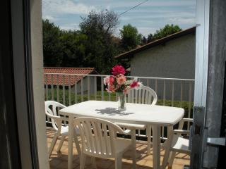 ANGLET /BIARRITZ (FRANCE) T2 43 M²ds villa calme ensoleillé jardin park wifi