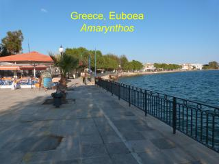 Summer vacation, 2 bedrooms apt, 40m from beach, Amarynthos