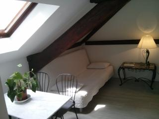 Charming studio with mezzanine near nature & PARIS, Brunoy