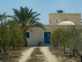 villa accessible par piste dans palmeraie calme, Houmt Souk