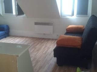 Grand studio 3 couchages/ Center of Paris 3 Pax.