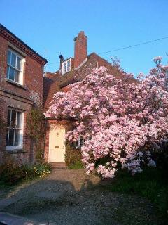 Front of house in spring