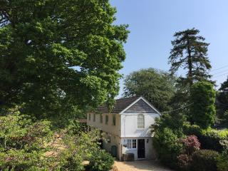 New Forest Cottage backing onto Open Forest