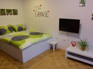 Frogger's Nest Studio + P, Liubliana