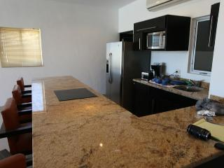 Pedregal Luxury Condo