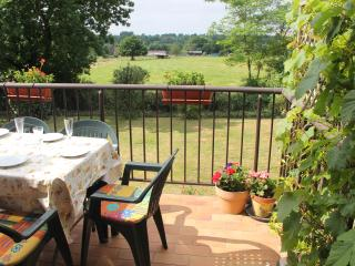 SPECIAL OFFERS SEPT! Countryside views, big gardens, pet-friendly family home