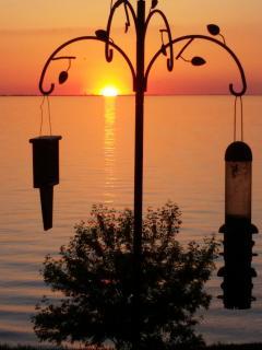 Bird Feeder at Sunset