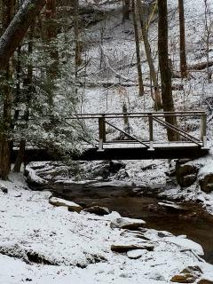 Hiking trail bridge crossing creek behind the cottage