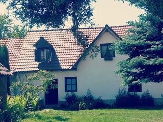 Porumbacu 295 Transylvanian GuestHouse Near Sibiu
