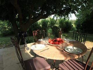 Chez  OLIVE      Au calme et à la campagne à 10 minutes d'Avignon, Montfavet
