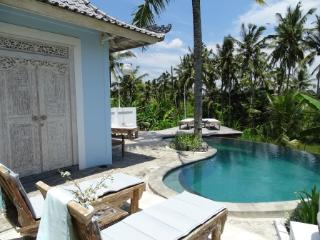 Villa Blessings with private infinity pool Welcome, Ubud