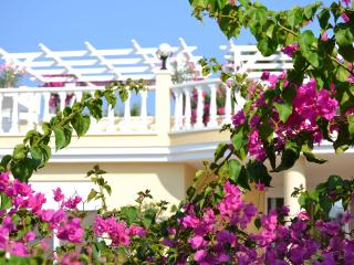 HONEYMOON VILLA; Romantic, Private Gardens & Pool