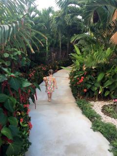 A garden walk................