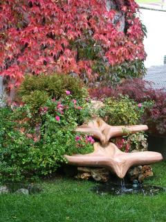 dettagliogiardino magnolia e calicanto