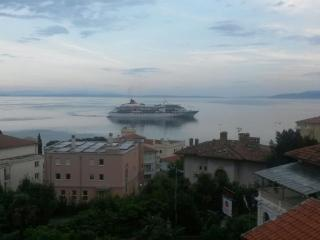 WIFI free, two balcony, look at the sea, Opatija