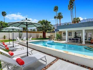 Deepwell Modern Retreat, Palm Springs