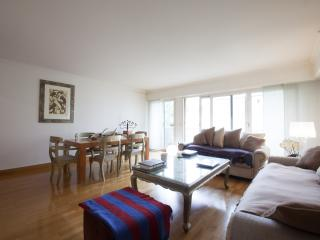 tour Eiffel 5 min apt luxueux 100 m2, Paris