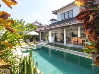 Gorgeous 3 bedroom tropical villa in Seminyak