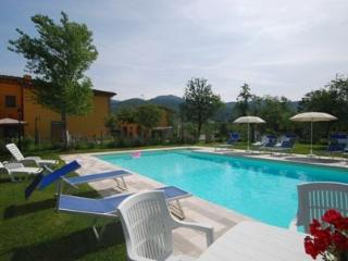shared swimming pool Podere Sco - Salmone