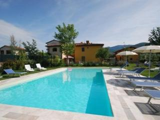 shared swimming pool Podere Sco - Violetta