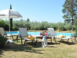 Amazing Villa Alessandra - Villa Alessandra
