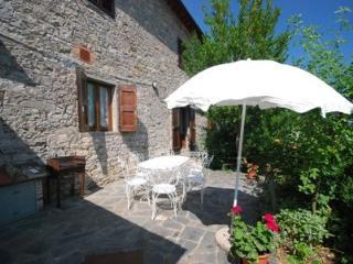 Nice rental in Tuscany Castagnoli - Castagnoli 4