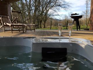 Abernant Barn - sleeps 8 (hot tub), Llanwrtyd Wells