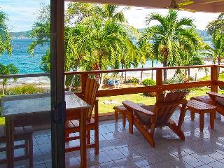 Beautiful Beach Front Condo, Playa Flamingo
