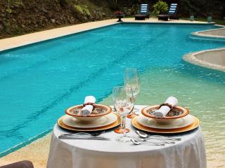 Mont Carpe Diem. Boutique Inn. Luxury cabins in a Puerto Rican rainforest.