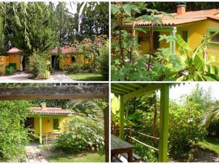 """maison """"créole"""" au coeur d'un jardin exotique, Thuir"""