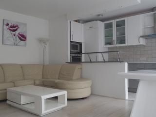 Appartement avec balneo et hammam, Boulogne-Billancourt