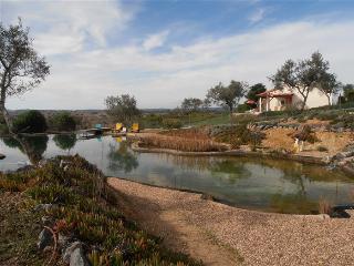Monte Flora com lago para nadar orgânica, Ourique