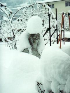 Notre fée du jardin en hiver
