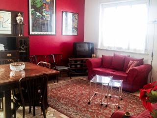 Wonderful wide well served apartment- up to 6!, Milan