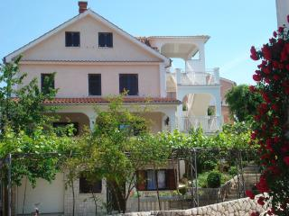 Apartment Sanda P for 4 people, Vantacici