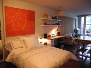 Beautiful designer condo in the heart of downtown, Vancouver