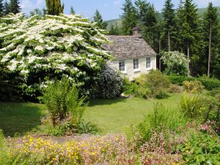 Wildlife Hideaway , Llanthony, Black Mountains, Abergavenny
