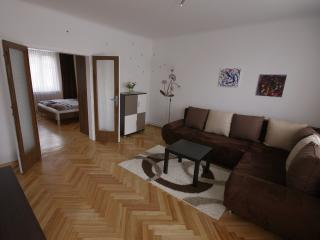 Haus Apricum - Wohnung mit Terrasse und Wienblick