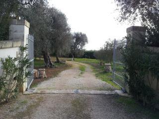 Pajaru Salentino in Otranto, Maglie