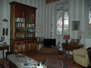 Bel appartement ancien bord de saone, Lyon
