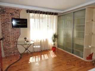 Luxury Daily Rent Studio Apart In The City Centre, Kiew